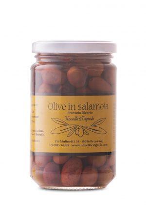 Olive taggiasche in salamoia Novella e Vignolo